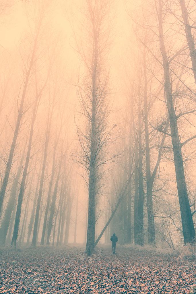 nebbia-0031-Modifica.jpg